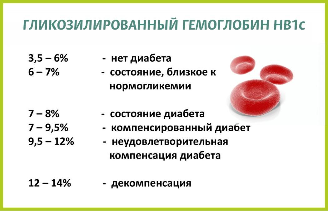 нормы глико гемоглобина